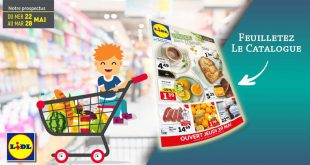 Catalogue Lidl Du 22 Au 28 Mai 2019
