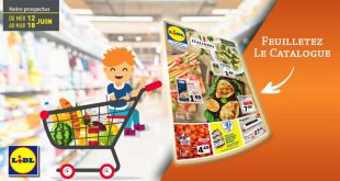 Catalogue Lidl Du 12 Au 18 Juin 2019