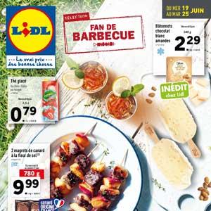 Catalogue Lidl Du 19 Au 25 Juin 2019 Monsieurechantillons Fr